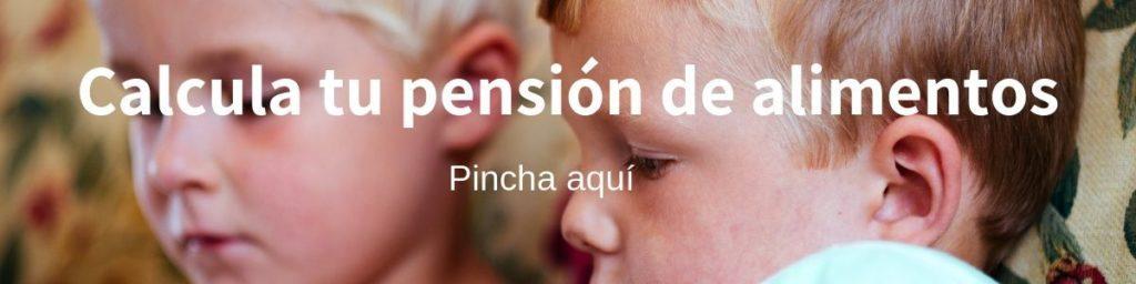 Calculadora pension alimenticia